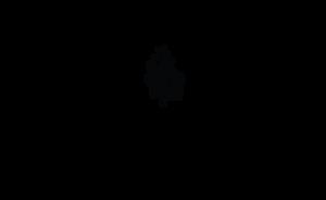 Kuiskaus_kunniamaininta_logo_web